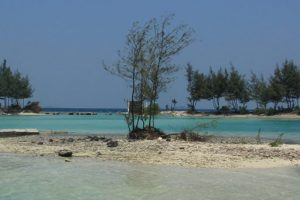 COVER_PULAU_PAYUNG