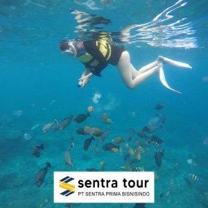 Pulau Sepa Pulau seribu