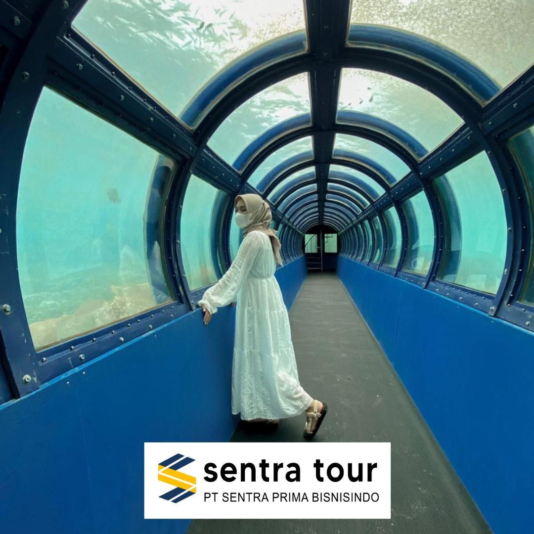 Undersea Tunnel Aquarium